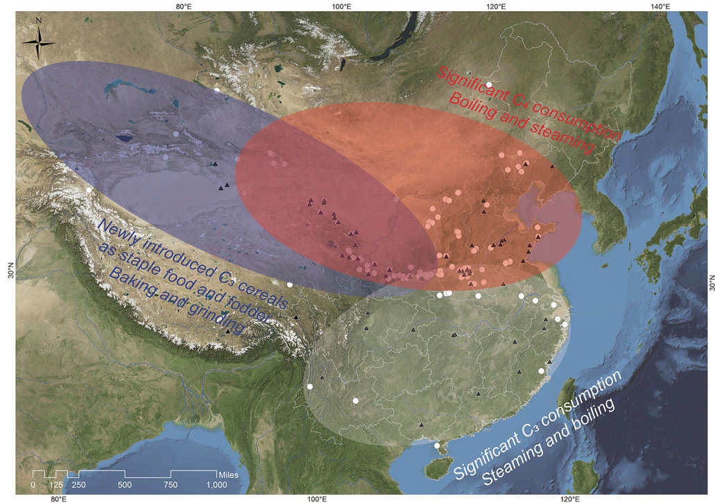 BELOW Proposed regional differences in culinary traditions in China after 2000 BC.