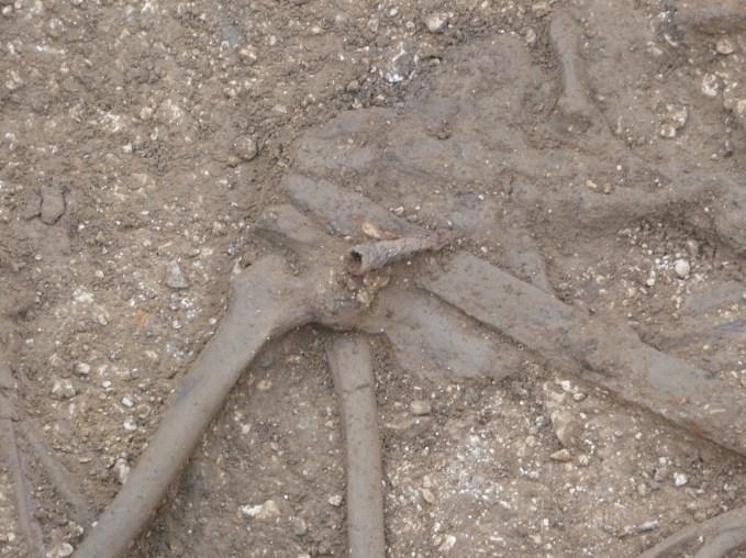 Photo: MAP Archaeological Practice / P Halkon.