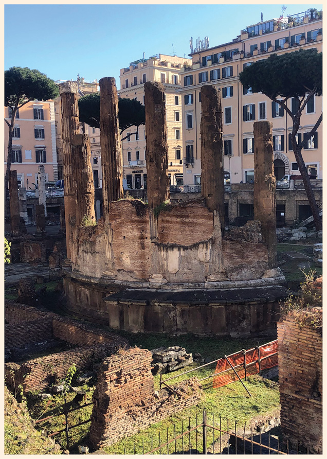 above & right One of the most important episodes in Roman history played out here, when Julius Caesar was assassinated near the Curia Pompeia. Today, the scene of this pivotal moment throngs with cats, not tourists.