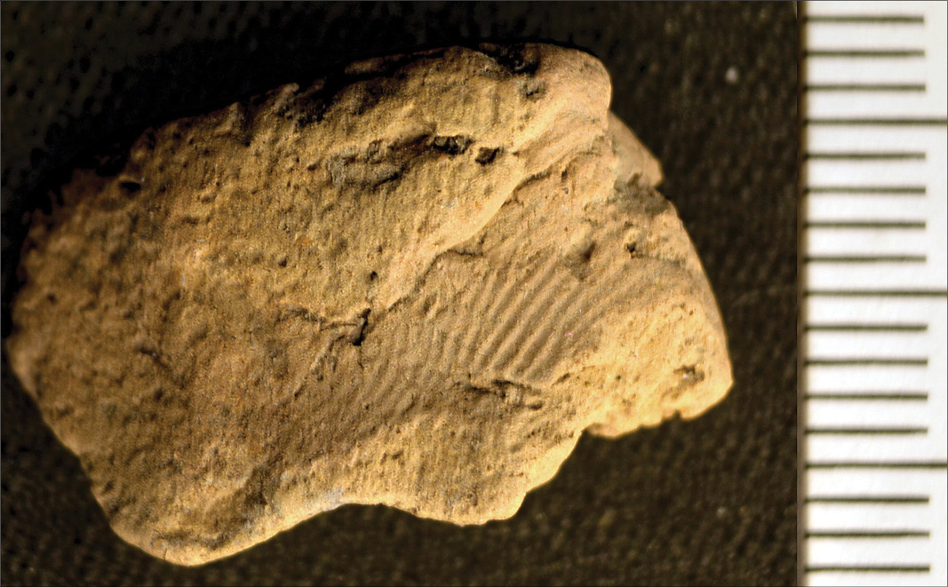 Further fingerprints found at the Ness of Brodgar