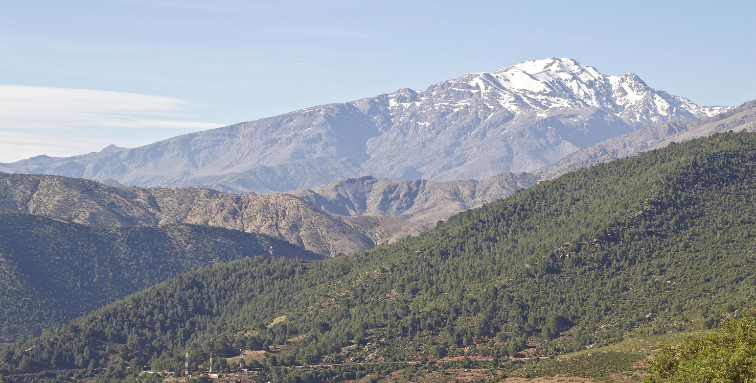 RIGHT Study of Late Pleistocene plant material from the High Atlas Mountains in Morocco has revealed new information about changes in climatic conditions thousands of years ago.