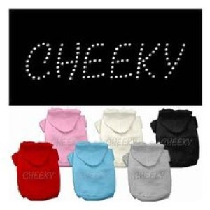 Cheeky Rhinestone Dog Hoodie | The Pet Boutique