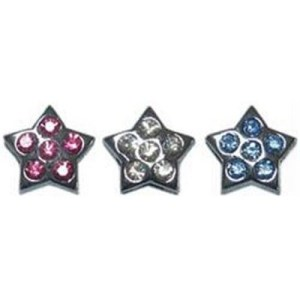 Slider Star Pet Collar Charm | The Pet Boutique