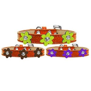 Metallic Flower Ice Cream Dog Collar - Orange | The Pet Boutique