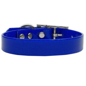 Plain Tropical Jelly Dog Collar - Blue | The Pet Boutique