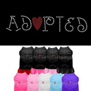Adopted Rhinestone Pet Dress | The Pet Boutique