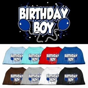 Birthday Boy Screen Print Dog Shirt | The Pet Boutique