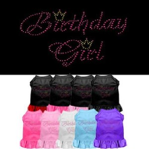 Birthday Girl Rhinestone Pet Dress | The Pet Boutique