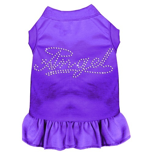 Rhinestone Angel Pet Dress - Purple | The Pet Boutique
