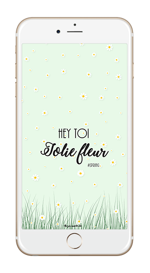 Fond d'écran - Hey Toi, Jolie Fleur iPhone