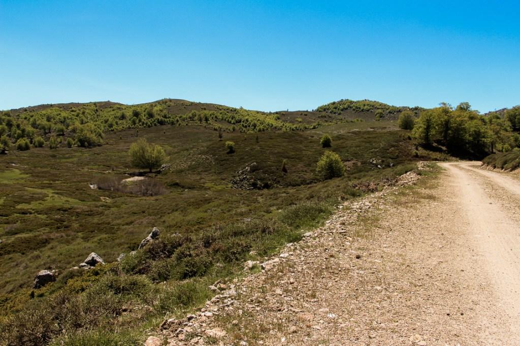chemin plateau coscione