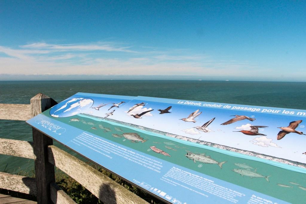 Panneau didactique Cap Gris-Nez