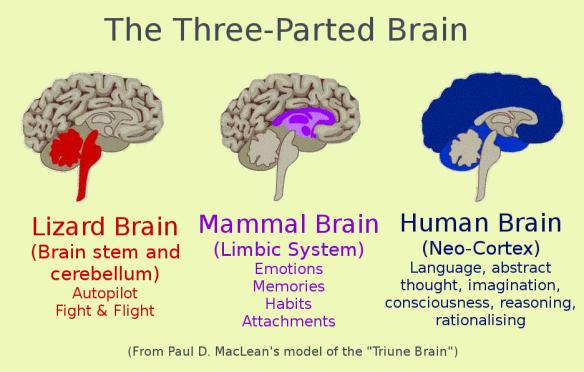 triune-brain.png