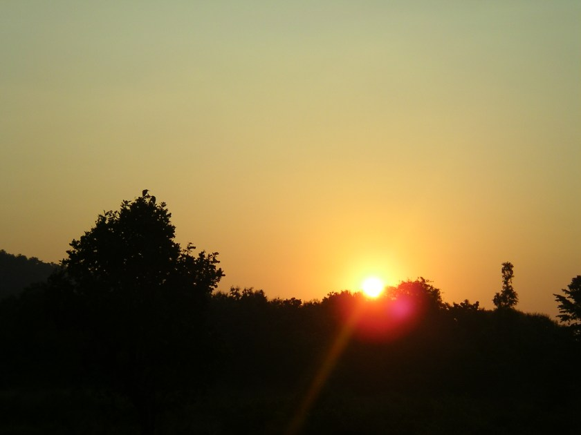 Sunrise, Jim Corbett, jungle safari