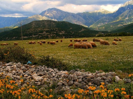 Albania, countryside