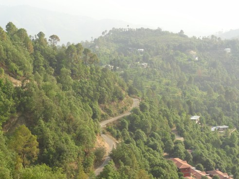 Peora, drive, Kumaon, Uttarakhand, Kumaoni villages, offbeat travel, Indian villages, Himalayan villages, countryside