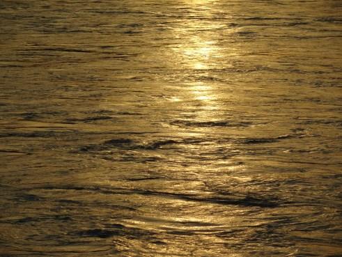 Ganga, Ganges, Rishikesh, sunset, ecology, environmental impact, water color