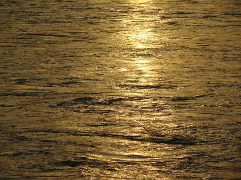 Ganga river rishikesh, environmental degradation rishikesh