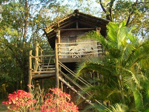 Machan, The Hermitage, Belgaum, Khanapur, tree house, offbeat travel, India forest lodge