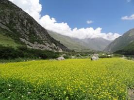 Chitkul, Himalayas India, Himalayas photos