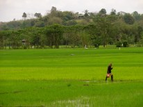 Chang Rai Thailand, Chiang Rai photos,