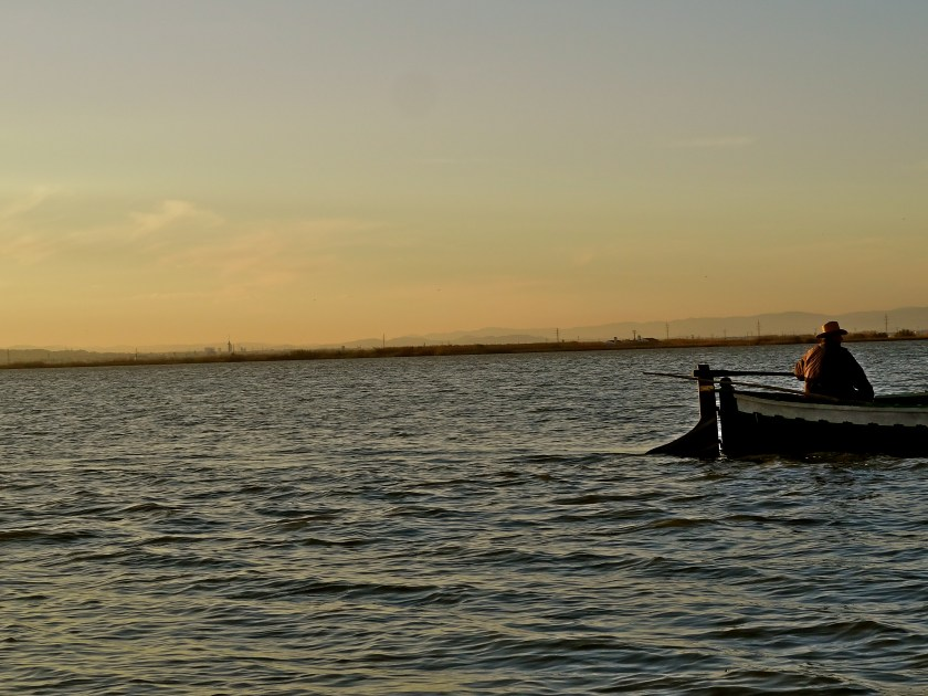 Valencia things to do, Valencia Albufera