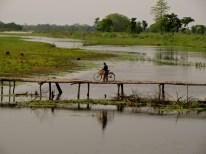 Majuli, Assam Majuli, Majuli island photos