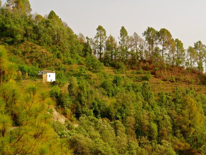 Peora, Kumaon village, Kumaon Himalayas, Delhi weekend getaways