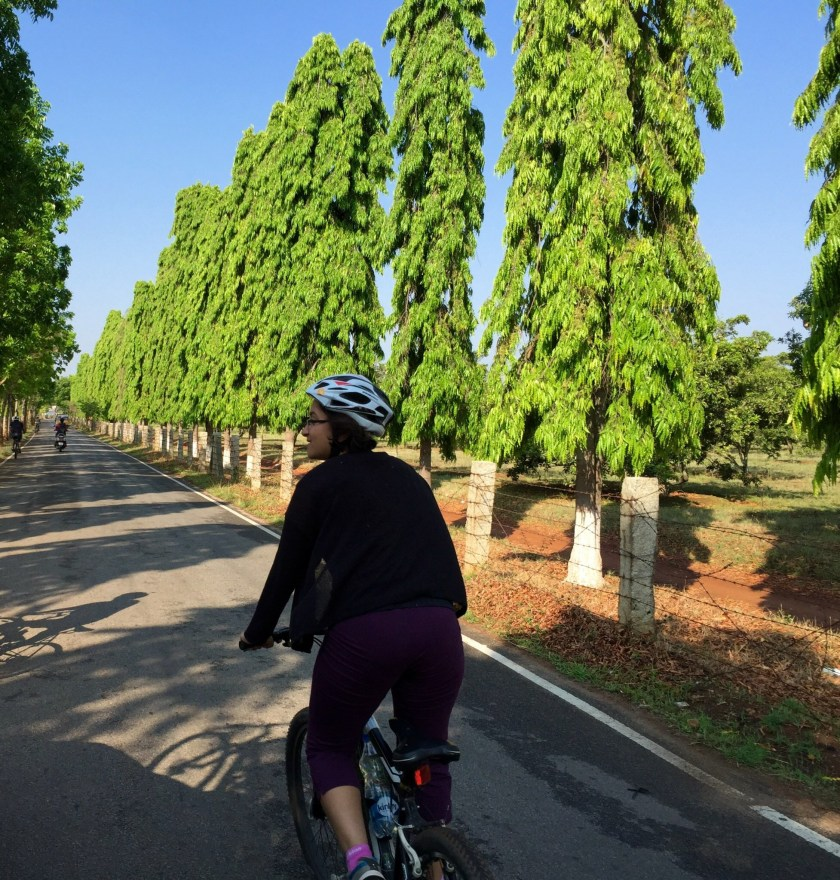 Bangalore cycling, art of bicycle trips, bangalore travel guide