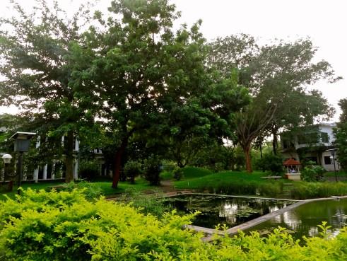 Auroville guest house, Auroville guest houses, Arka Auroville