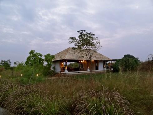 Svasara jungle lodge, Svasara Tadoba, Svasara resorts, Tadoba resorts