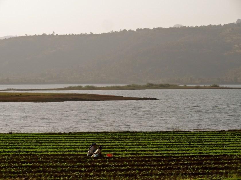 Pawna Lake, Pawna lake Lonavala, rural maharashtra, road trip near mumbai