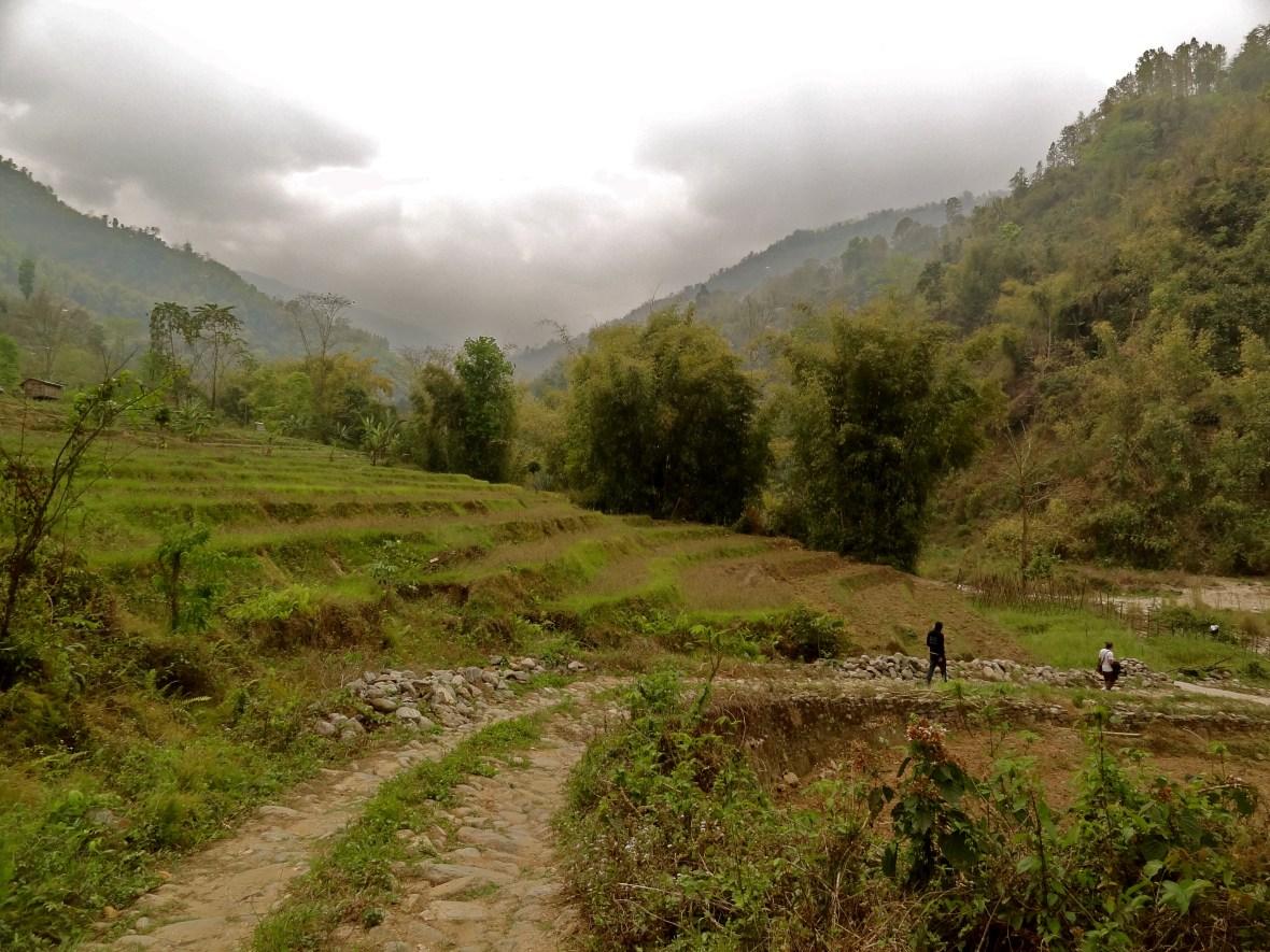 Indian Himalayas, Darjeeling to Sikkim