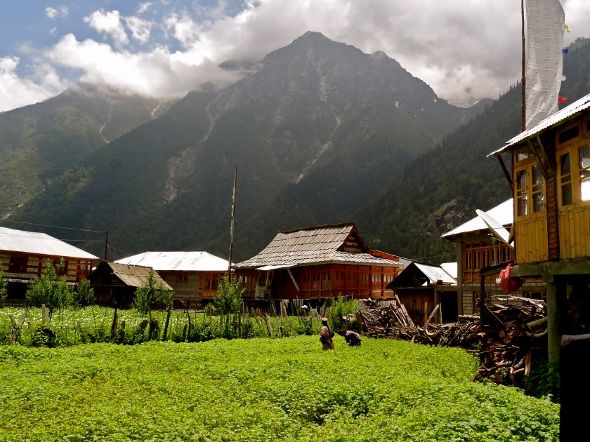 Rakcham, India Himalayas, Kinnaur