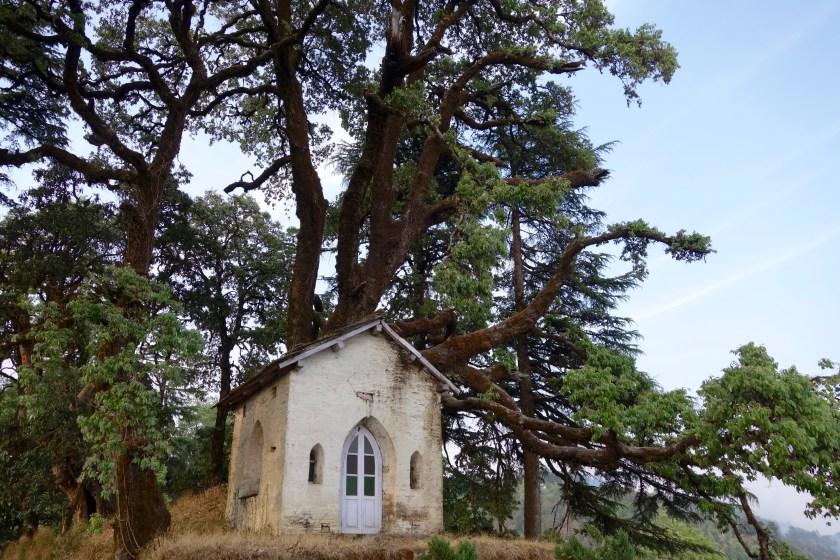 Grand oak manor binsar, binsar estates, binsar wildlife sanctuary