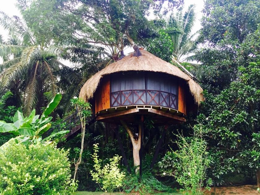 Huma terra sri lanka, airbnb sri lanka, airbnb hikkaduwa