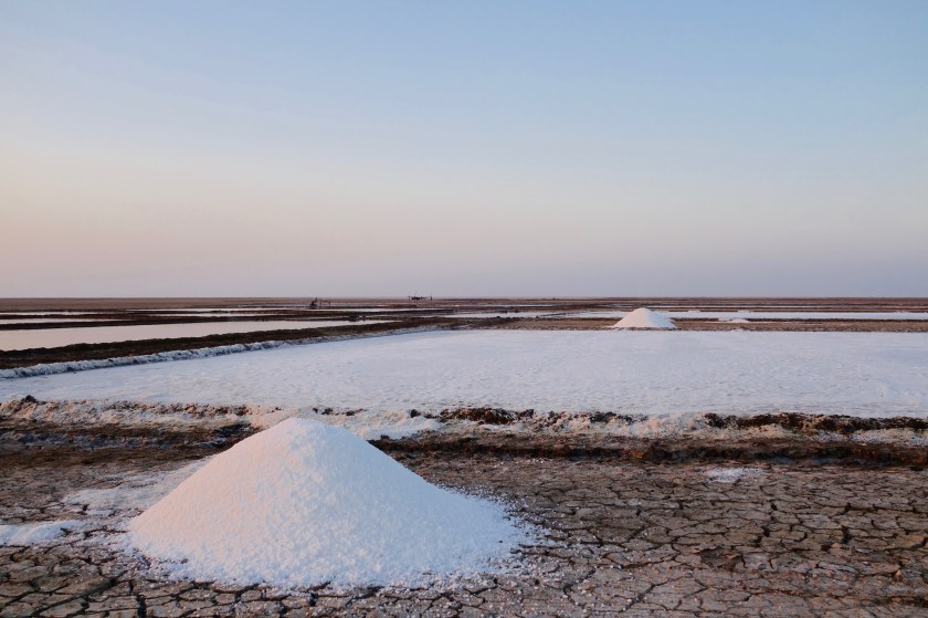Little rann of kutch guide, salt pans gujarat, gujarat travel guide