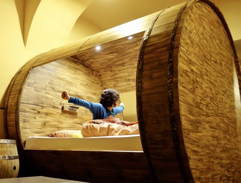 Ljubljana airbnb, airbnb slovenia, airbnb europe, shivya nath
