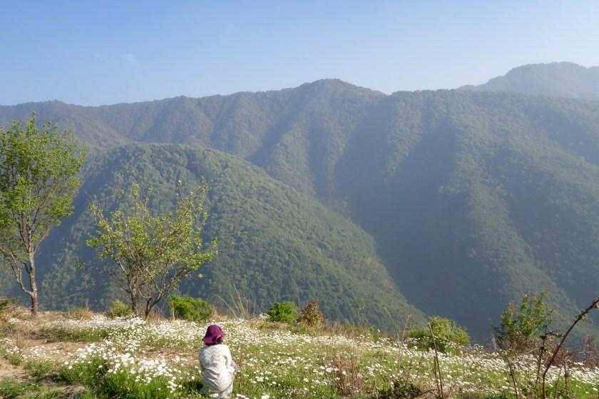 goat village, uttarakhand travel blog, shivya nath