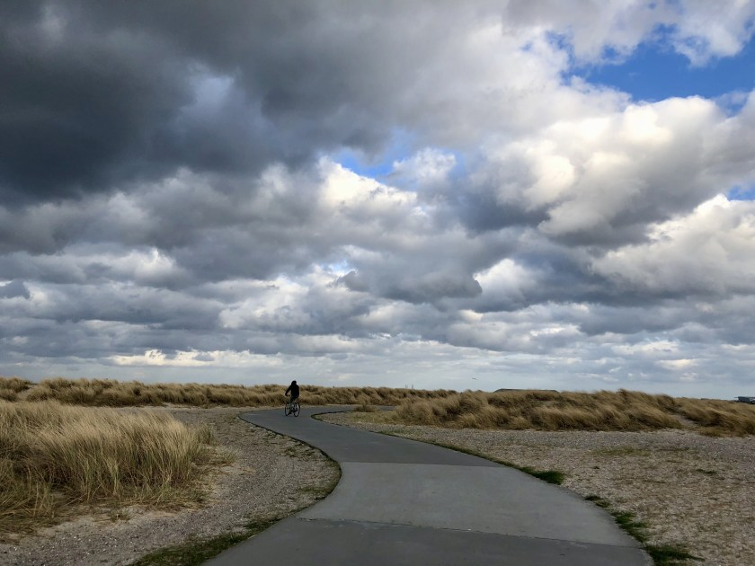 Amager strandpark, best things to do in copenhagen, fun things to do in copenhagen