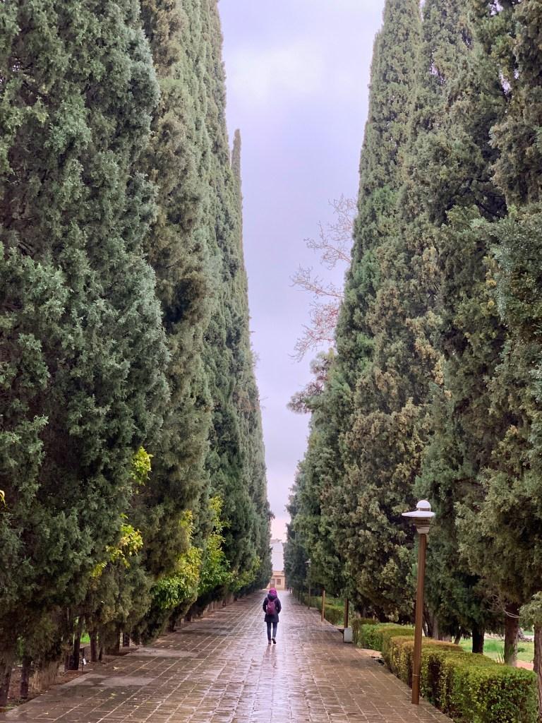eram garden shiraz, Iran travel blog, how is iran as a country, iran travel safety