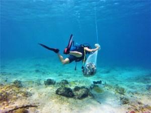Volunteering in a remote island in Cuba, Shivya the shooting star, Shivya Nath