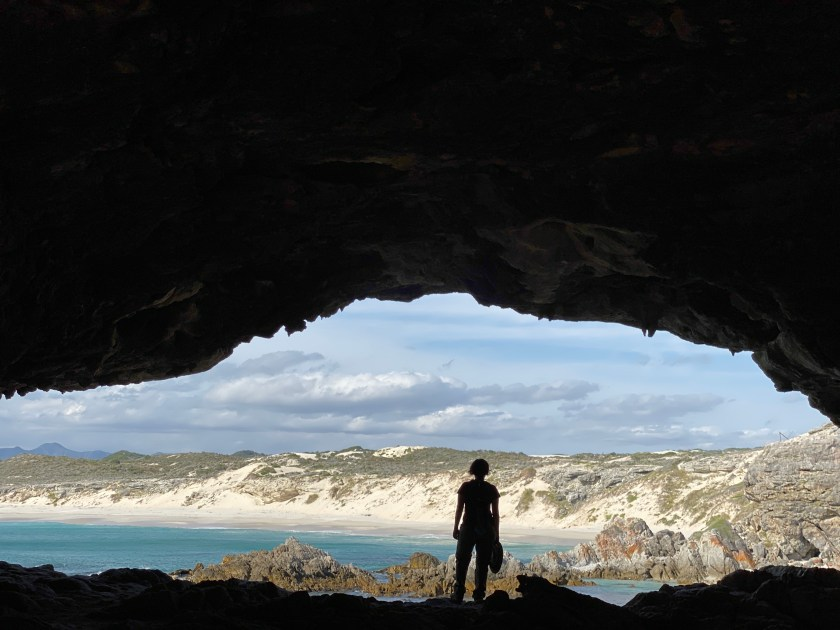 grootbos nature reserve, unusual things to do in cape town