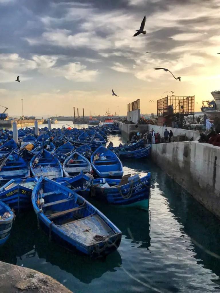 Essaouira Port - things to do in Essaouira