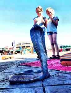 Marrakech With Kids -Jemaa el-Fna Square - beware of snake charmers