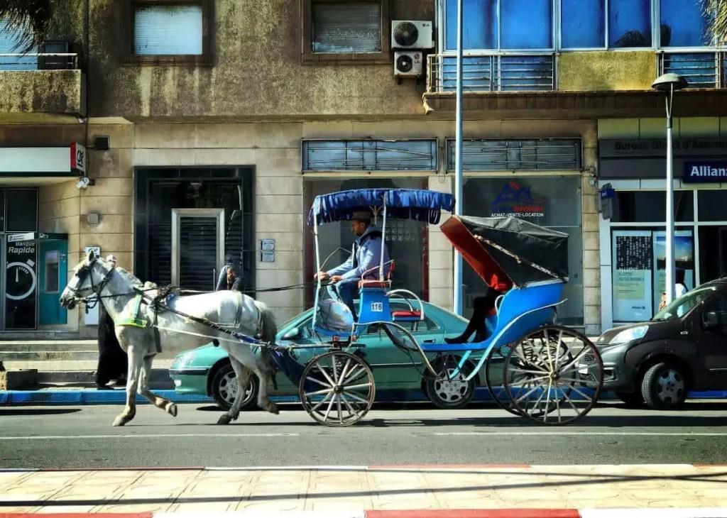 essaouira horse carriage,