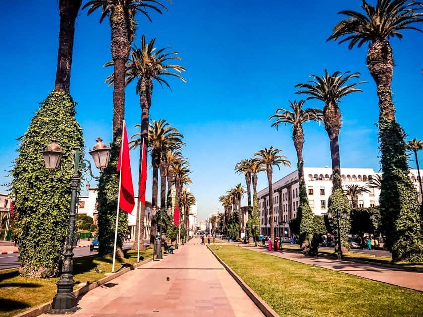 Ville Nouvelle Rabat - Alley with Palms in Rabat New City