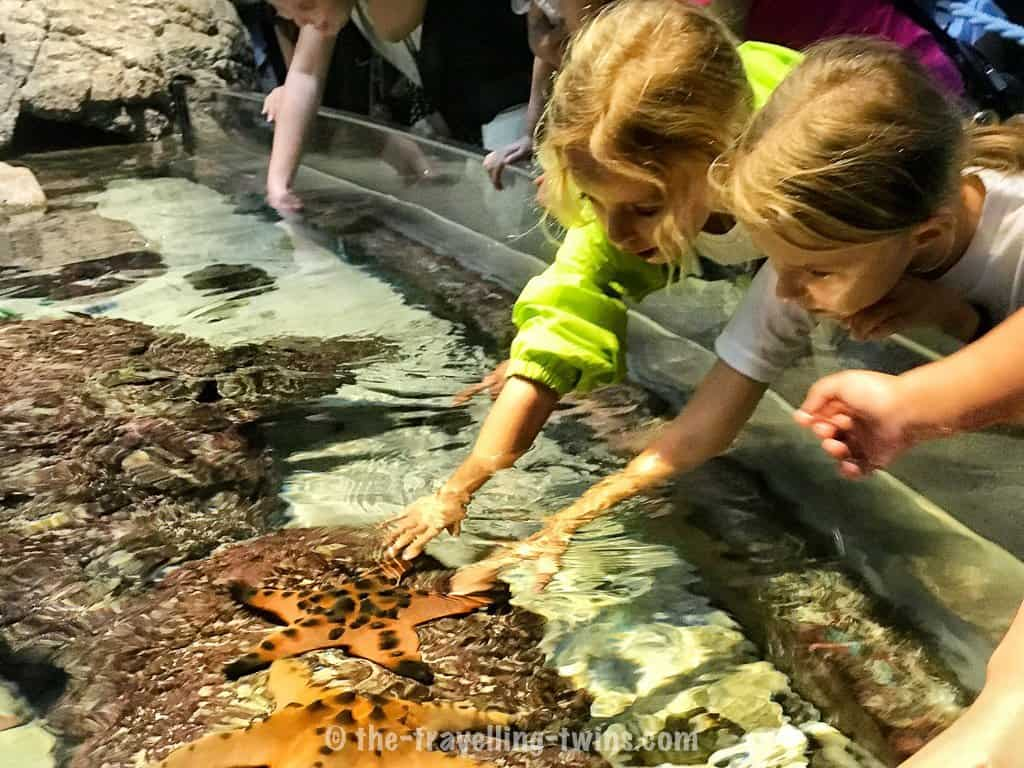 what to do in singapore today,  children's day singapore,  singapore places to go,  beautiful places in singapore