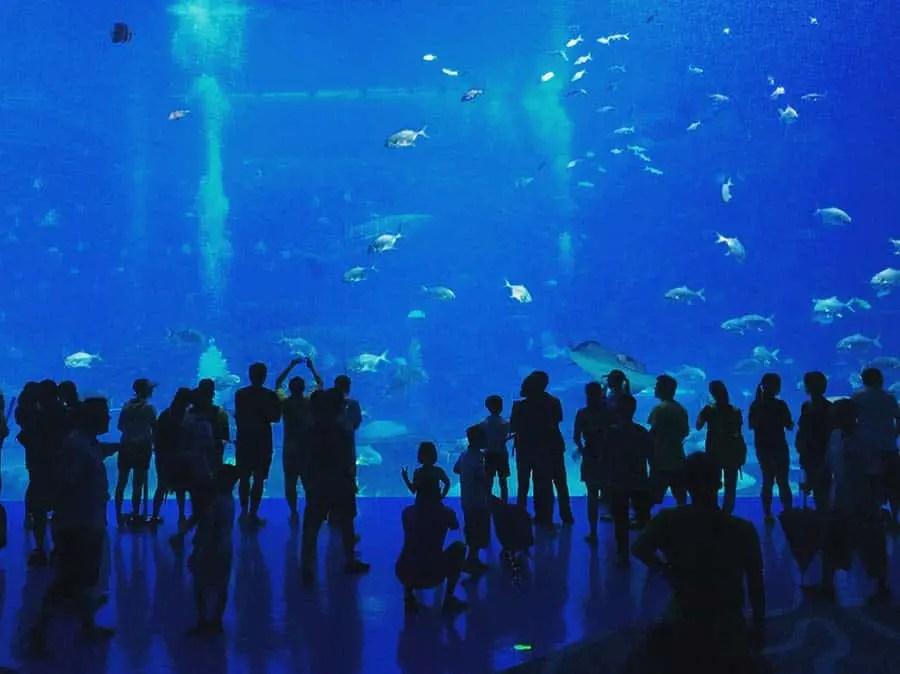 Zhuhai Aquarium
