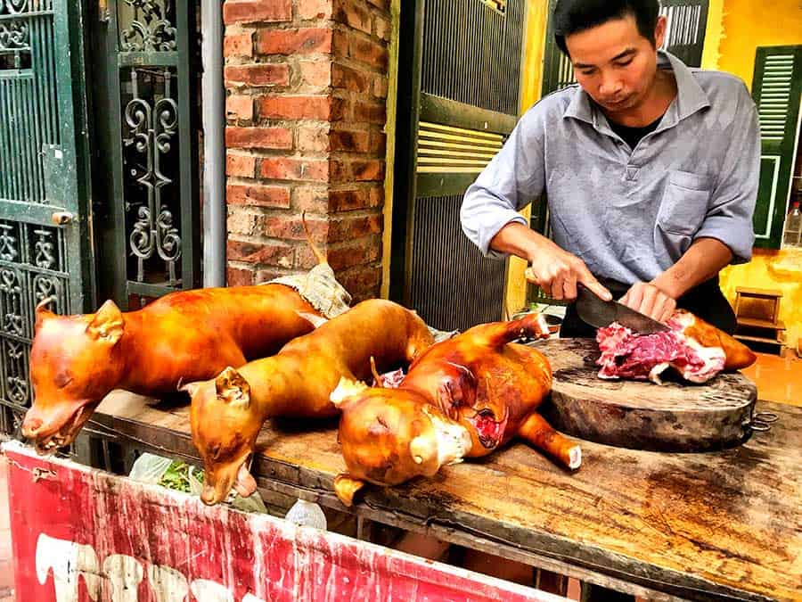 Vietnam is one of the Asian countries where people are eating dogs